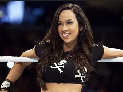 CM Punk comments on AJ Lee's return to the wrestling business